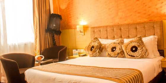 Room-Offers-Ramada-Neemrana